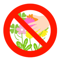 「花を採らないでください」のイラスト