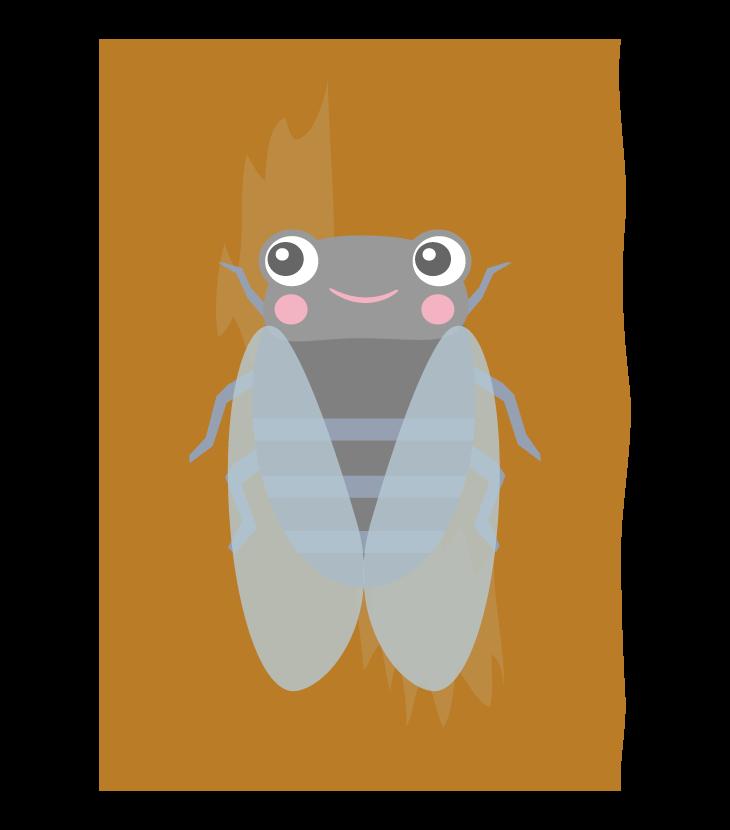 かわいい蝉(セミ)のイラスト