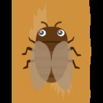 木にとまっているかわいい蝉(セミ)のイラスト