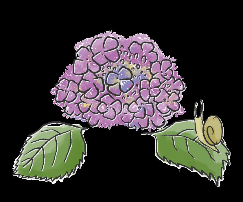花 植物 自然 のイラスト 無料のフリー素材 イラストエイト 6