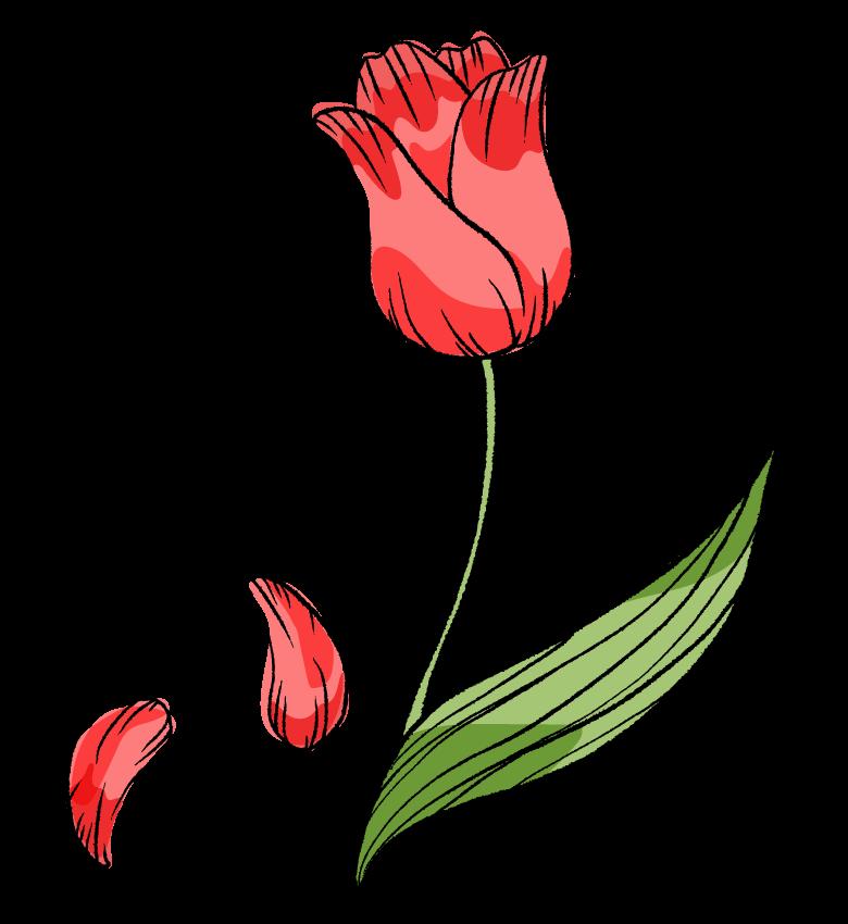 手書き風のチューリップのイラスト