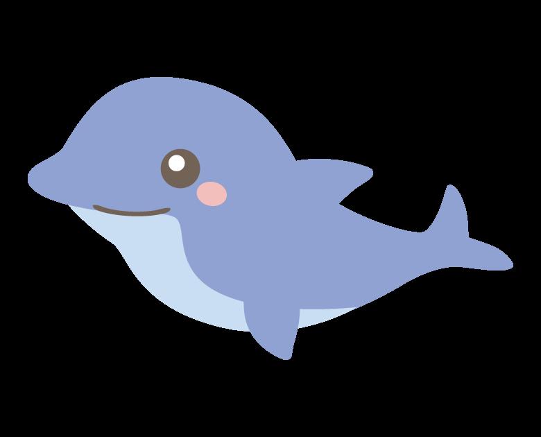 かわいいイルカのイラスト02