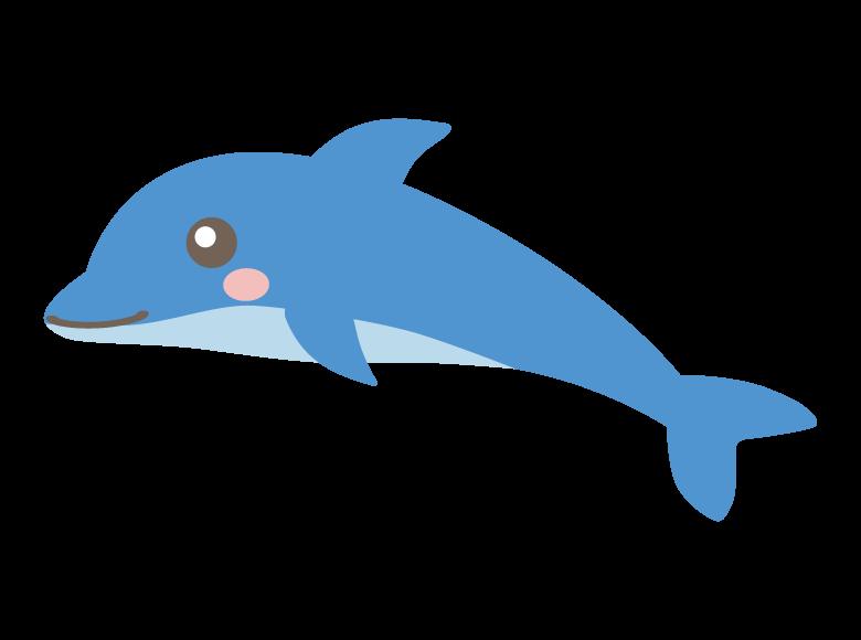 かわいいイルカのイラスト