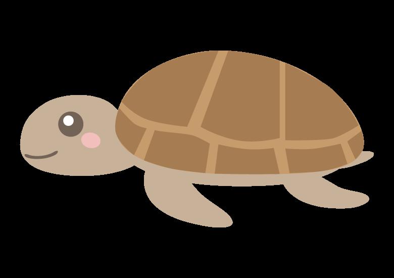 かわいいウミガメのイラスト