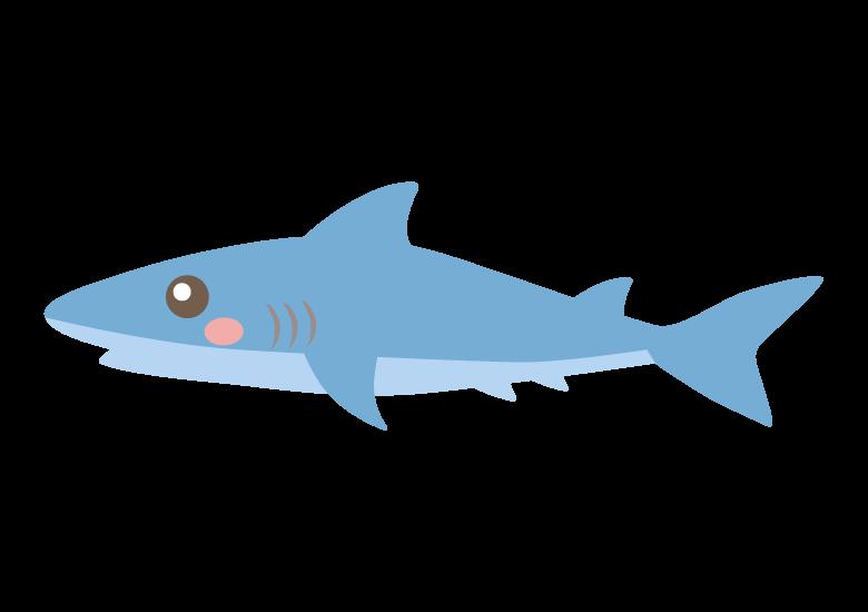 かわいいサメのイラスト