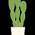 サボテン・観葉植物のイラスト