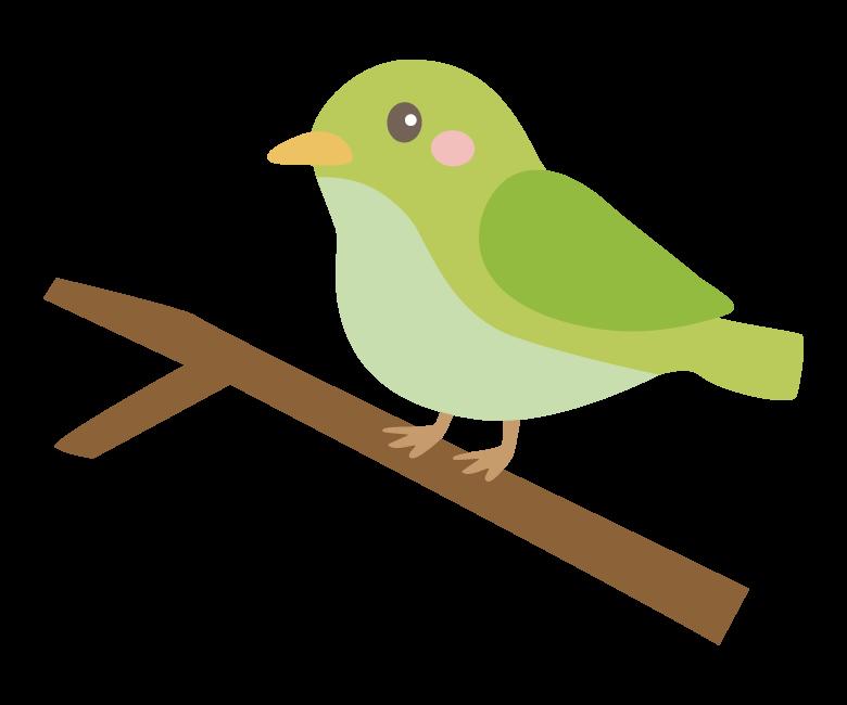 かわいいウグイス(鶯)のイラスト02