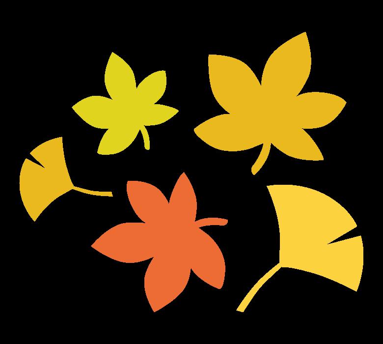 紅葉/イチョウのイラスト