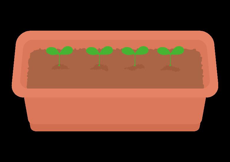 プランターと芽のイラスト