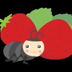 かわいい蟻さんと苺(いちご)のイラスト