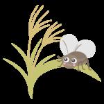 鈴虫とススキのイラスト