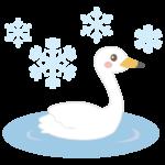 白鳥と雪の結晶のイラスト