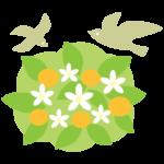 橘と鳥のイラスト