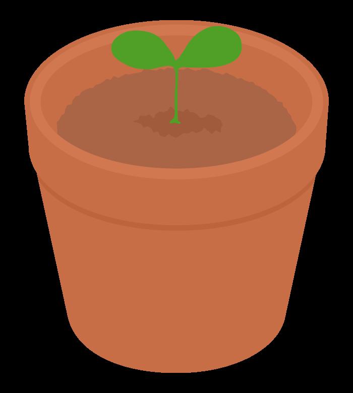 植木鉢と芽のイラスト