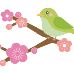 梅の花とかわいい鶯(うぐいす)のイラスト