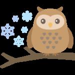 フクロウと雪の結晶のイラスト