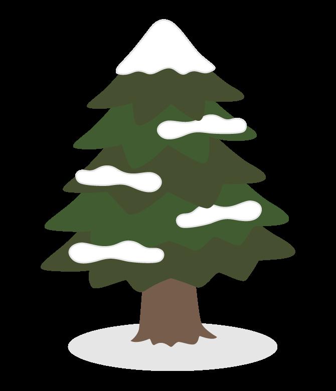 雪が積もったもみの木のイラスト