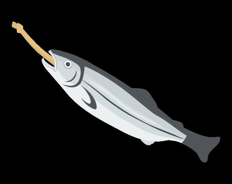 新巻鮭のイラスト02