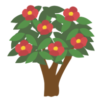 椿の花と木のイラスト