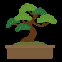 松の盆栽のイラスト