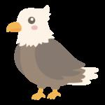かわいい鷲のイラスト