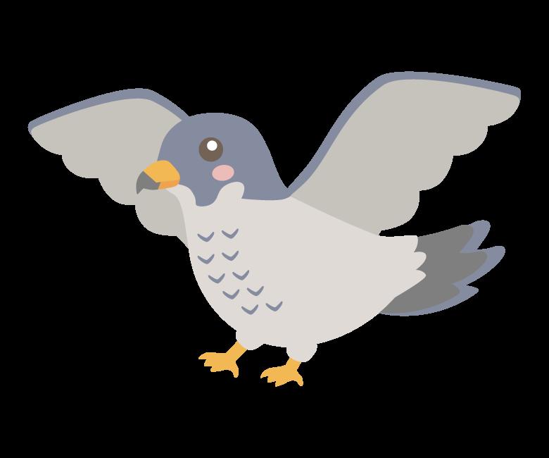 羽を広げているかわいいハヤブサのイラスト