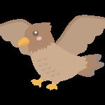 羽を広げているかわいい鷹のイラスト