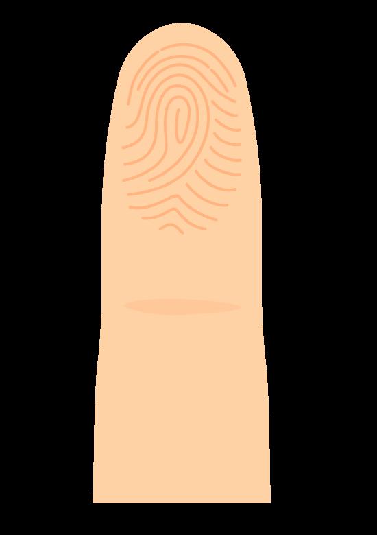 指と指紋のイラスト