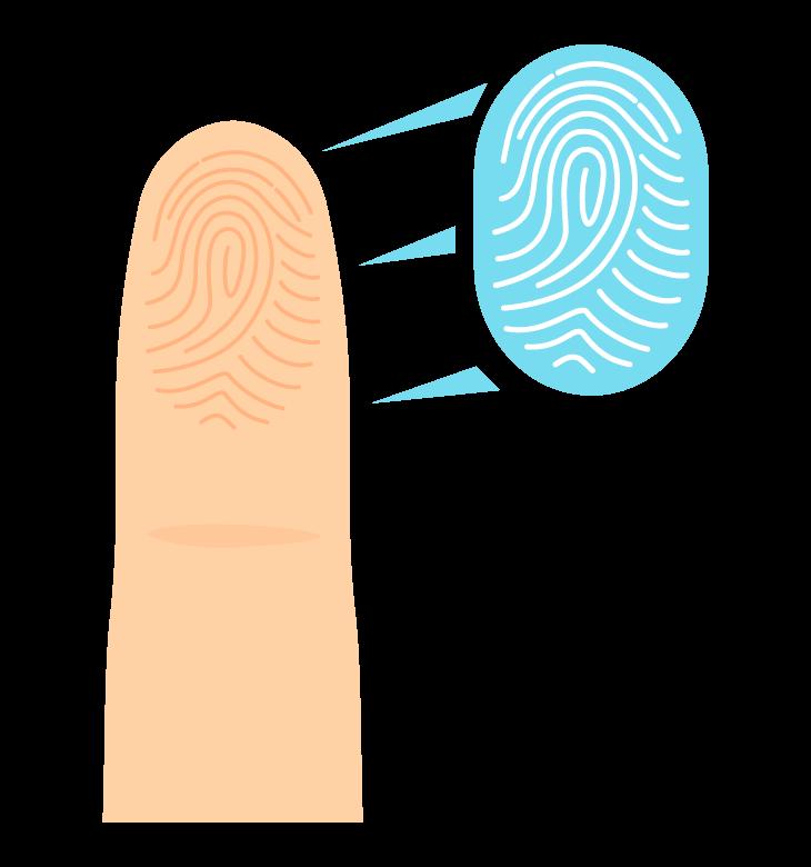 指と指紋/指紋認証のイラスト02