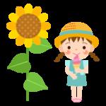 アイス/ひまわり/女の子のイラスト