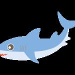 かわいいサメのイラスト02