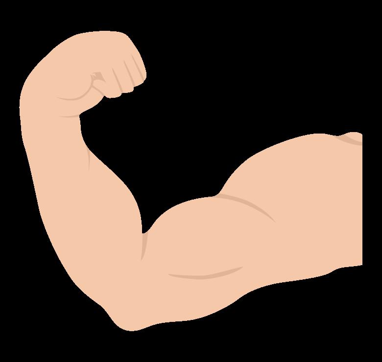 腕の筋肉/力こぶのイラスト