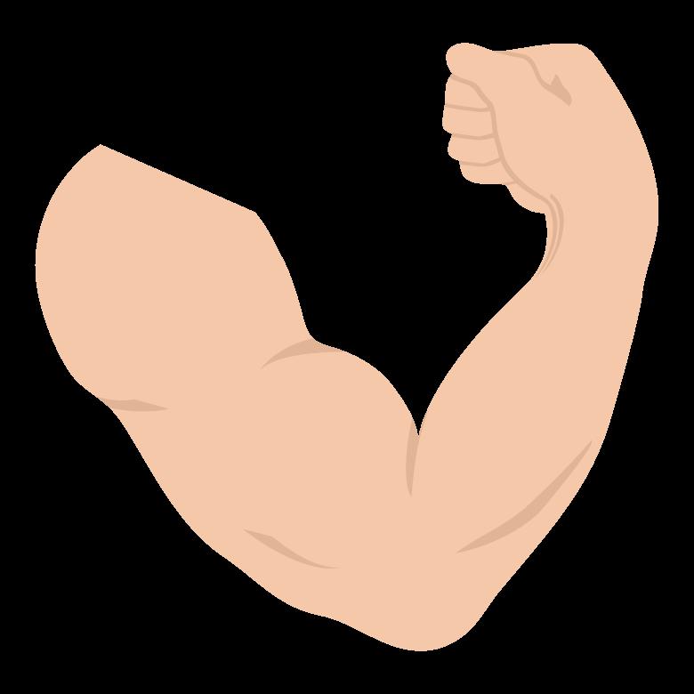 腕の筋肉/力こぶのイラスト02