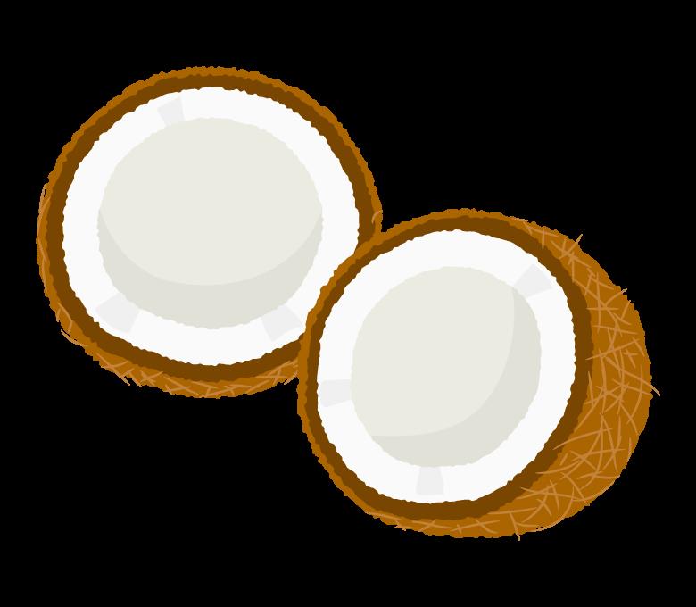 カットされたココナッツのイラスト