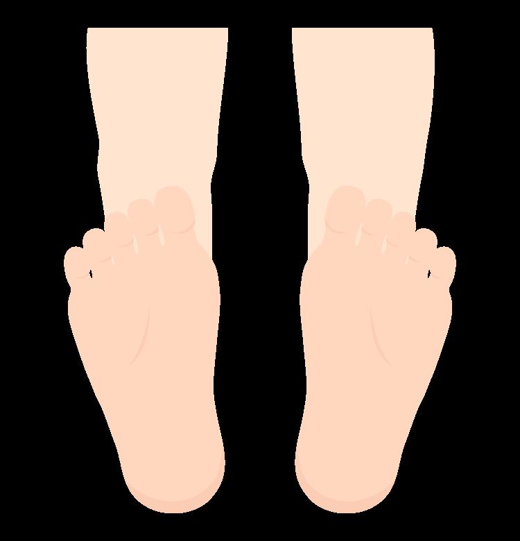 足と足裏のイラスト